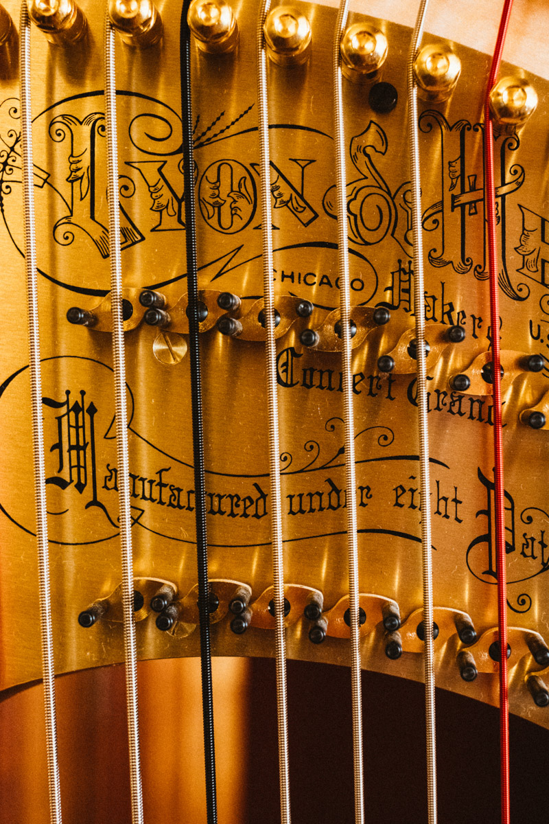How to be a harpist - CityMag